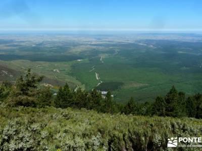 Cuerdas de La Pinilla y Las Berceras; madrid senderismo, rutas senderismo;bosques encantados
